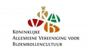 logo kavb website