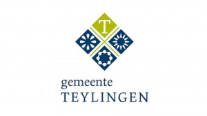 logo teylingen website